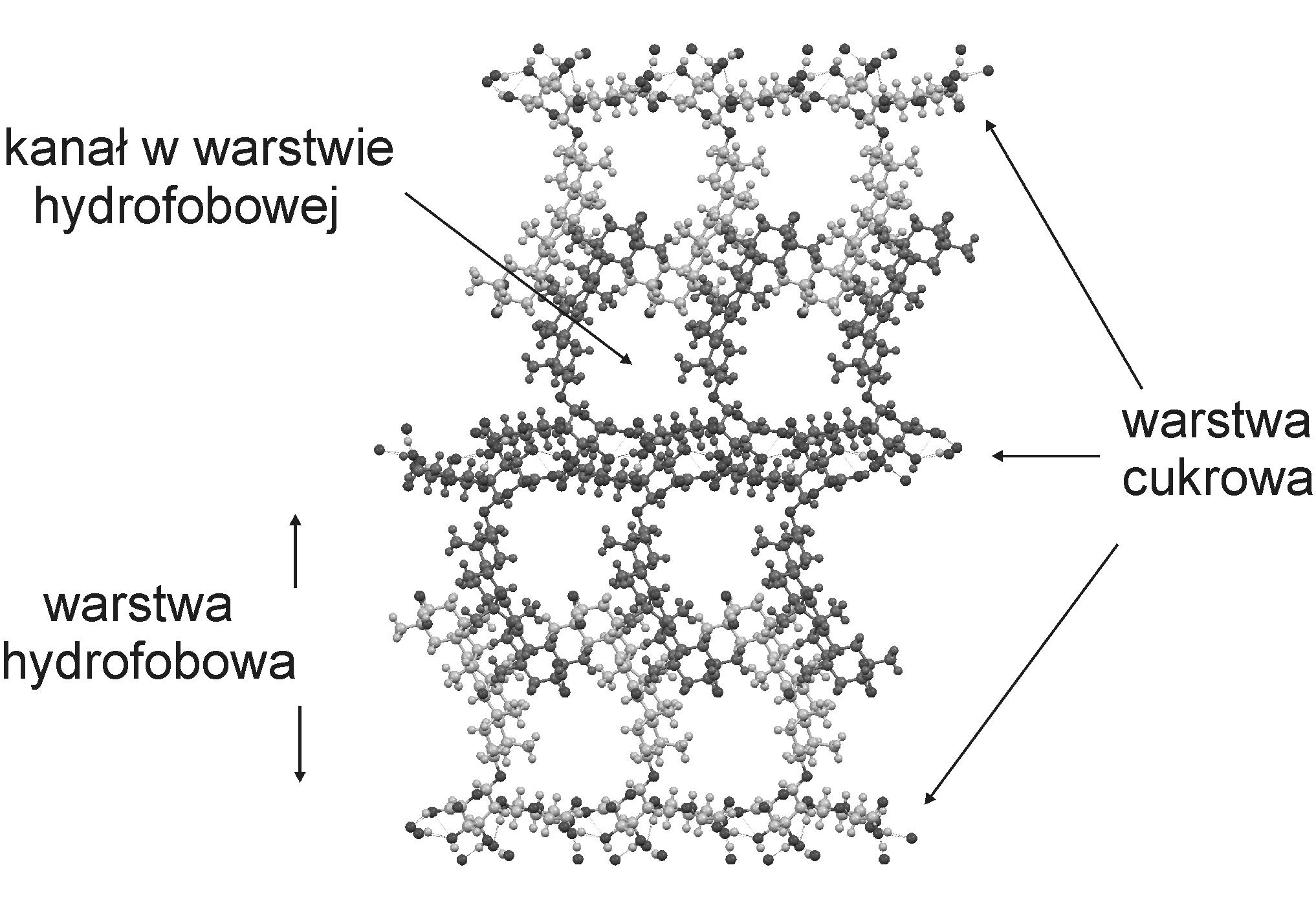 krysztal kwasu glicyryzynowego